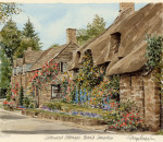 Cotswold Cottage Broad Campden