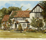 Cobham - The Cricketers