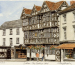 Ludlow - 'Feathers'