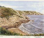 Guernsey South Coast